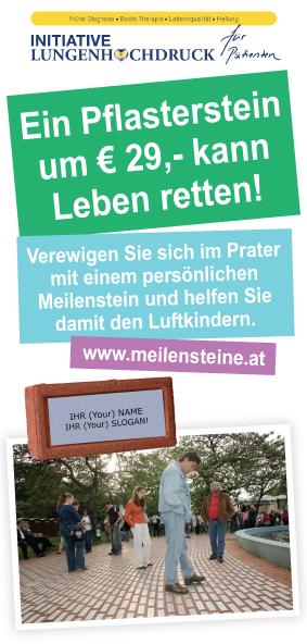 Meilenstein_Flyer_10x21cm_o
